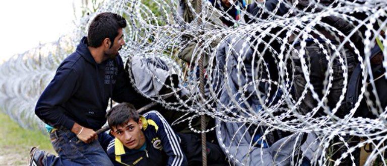 Article : La Hongrie couvre l'Europe de honte